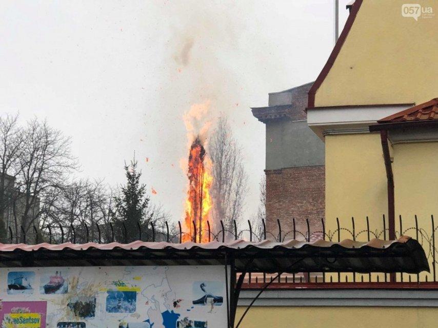 Горящая елка на территории консульства РФ в Харькове  - фото 161411