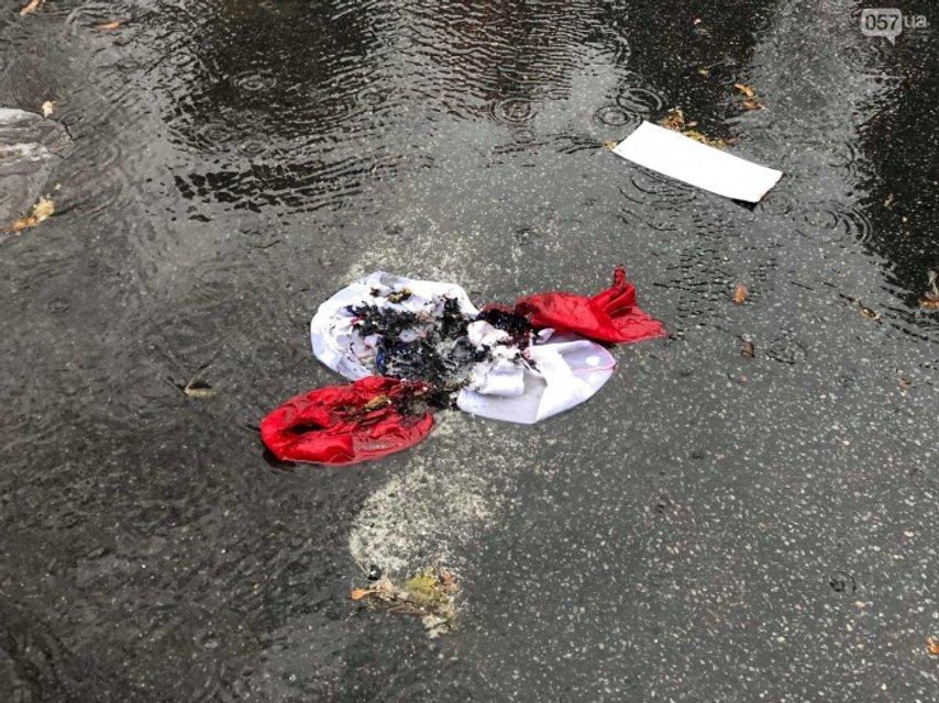 Остатки сожженного флага страны-агрессора  - фото 161412