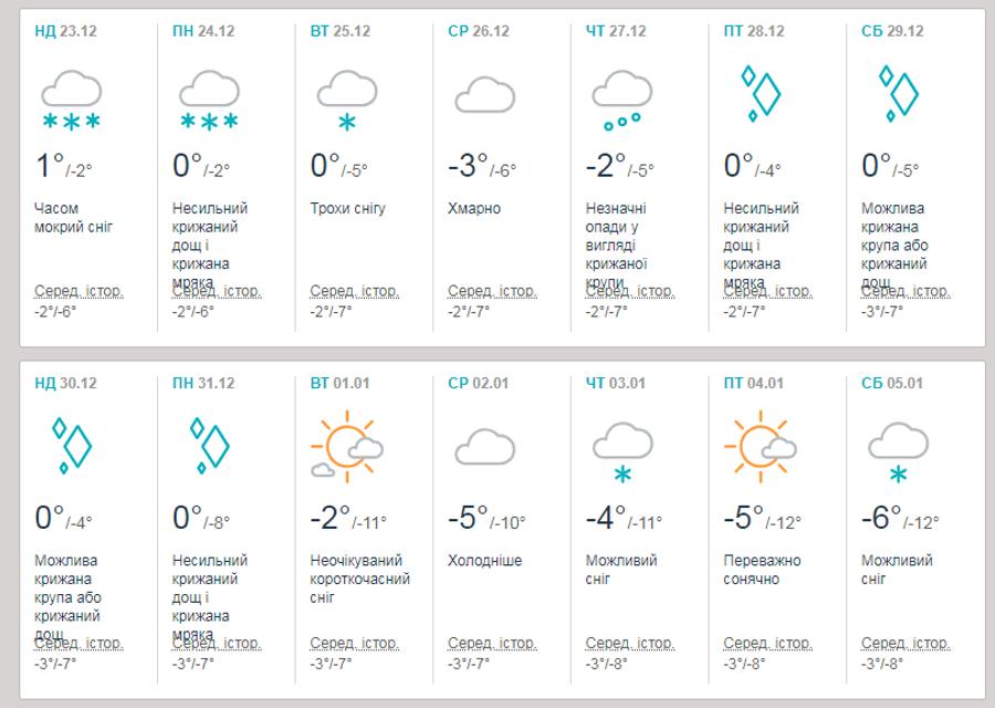 Прогноз погоды на Новый Год 2019 в Украине - фото 165191