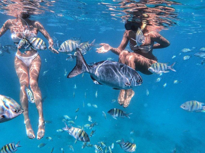 Известная украинская певица восхитила подводной фотосессией в бикини - фото 166336