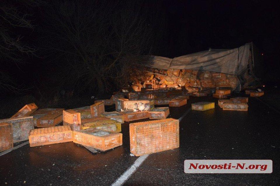 Под Николаевом перевернулся грузовик с 6000 кур - фото 168780