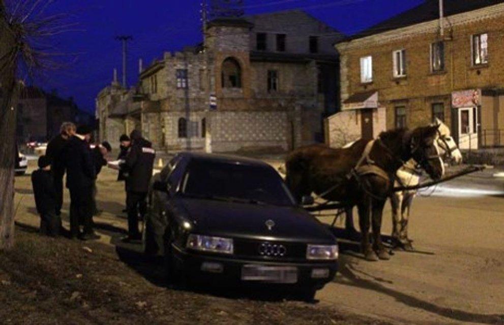 В Хмельницкой области рецидивист угнал лошадей и врезался в машину (ФОТО) - фото 174114