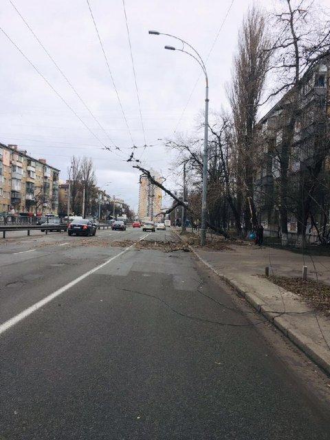 В Киеве ураганный ветер срывает крыши и валит деревья (ФОТО) - фото 175560