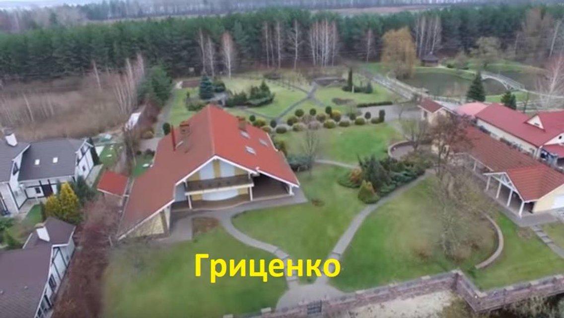 Виллы кандидатов: в сети высмеяли 'жлобские' вкусы политиков – ФОТО - фото 178053