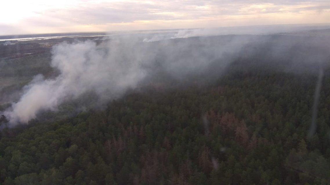 В Зоне отчуждения случилось ЧП, из-за которого в небо подняли авиацию - фото 178590
