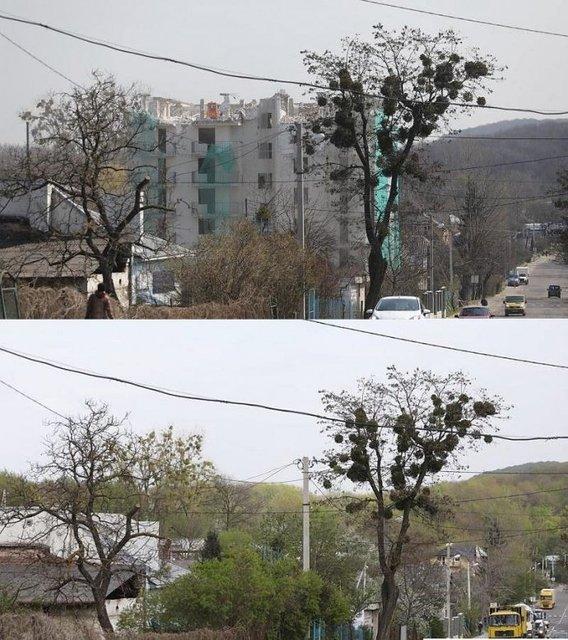 Впервые в Украине: во Львове снесли незаконную многоэтажку - фото 180270