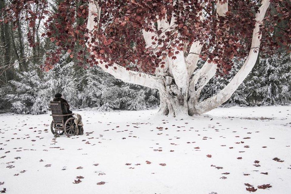 Игра престолов 8 сезон 6 серия - что было в финале сериала - фото 181310