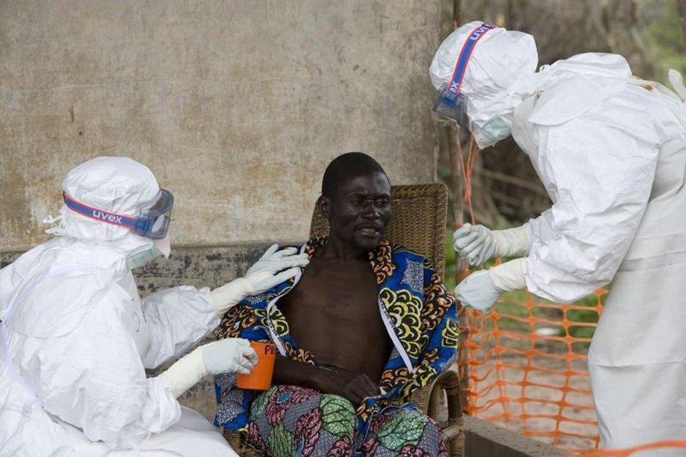 Вирус Эбола - стоит ли бояться украинцам этой опасной  заразы - фото 184537