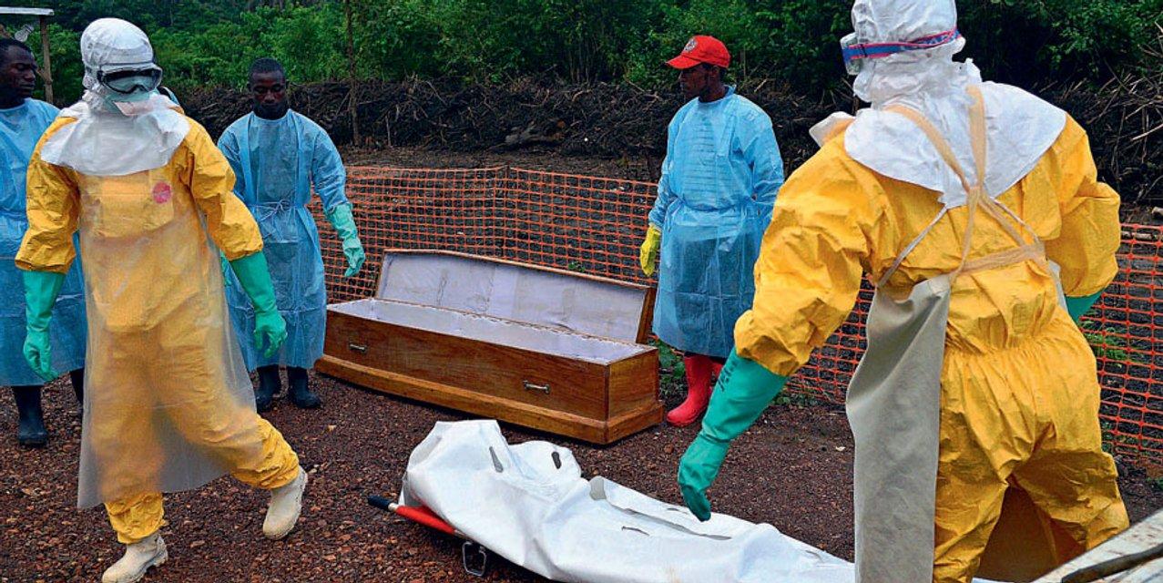 Вирус Эбола - стоит ли бояться украинцам этой опасной  заразы - фото 184545