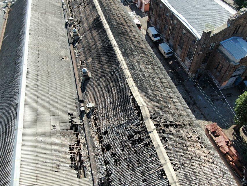 Владельцы сгоревшего в Одессе отеля нелегально заселяли людей в собачьи будки (ВИДЕО) - фото 186134