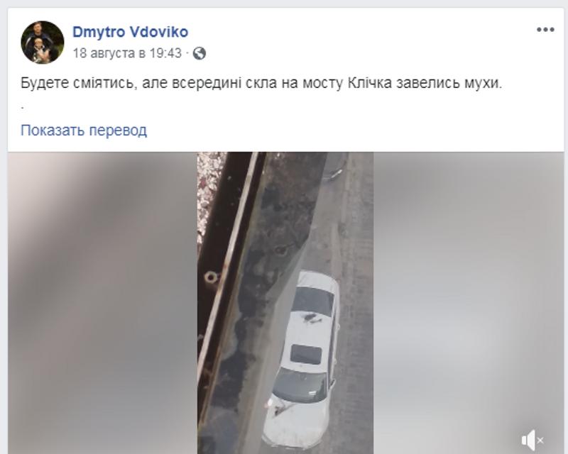 В мостике Кличко завелась жизнь – ФОТО, ВИДЕО - фото 186258