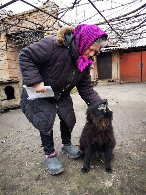 'Собачник' Брагар проигнорировал бабушку с Шариком – ФОТО - фото 195574