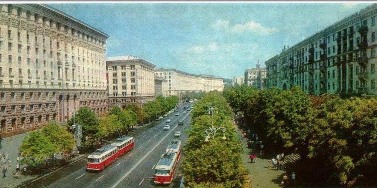 Туёвый мэр: Кличко оправдался за туи в центре Киева - фото 200519