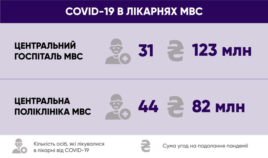 МВД потратило на борьбу с коронавирусом больше сотни опорных больниц - фото 202025