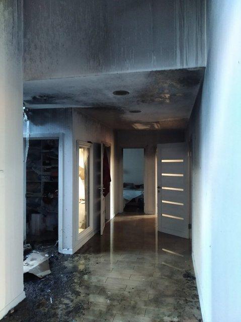 В Киеве сожгли дом антикоррупционера Шабунина (ФОТО) - фото 203101