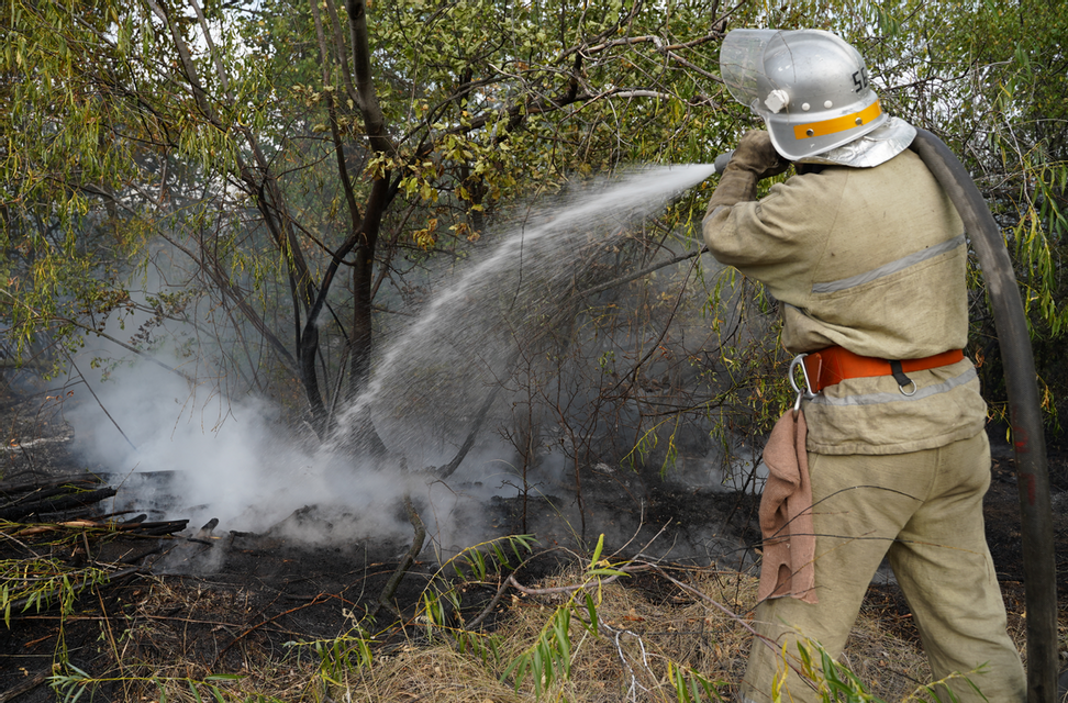 Спасатели ликвидировали масштабные пожары на Луганщине - фото 204993