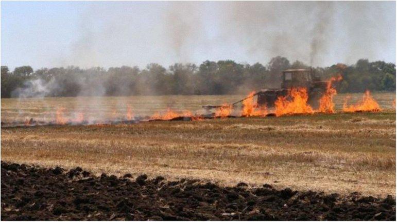 Спасатели сдерживают огонь, подбирающийся а АЗС. - фото 1