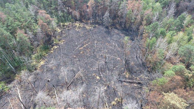 30 июля в 15:00 ликвидирован пожар, возникший вблизи г. Припять - фото 1