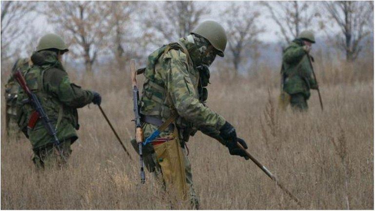 Терористам приказали заминировать поля, где еще не собирали урожай. - фото 1