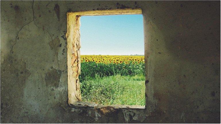 Две модели поведения украинского общества - фото 1