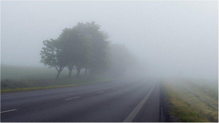 ГСЧС просит быть внимательными на дорогах  - фото 1