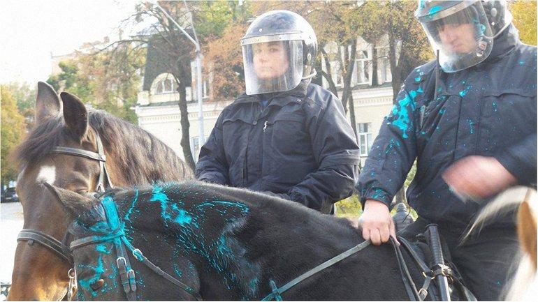 Активисты облили себя, полицию и лошадей зеленой краской - фото 1