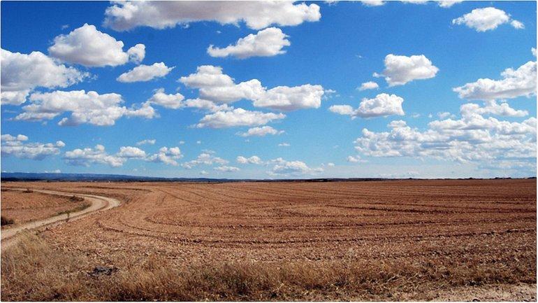 Верховная Рада продлила мораторий на продажу сельхозземель до 2018 года - фото 1