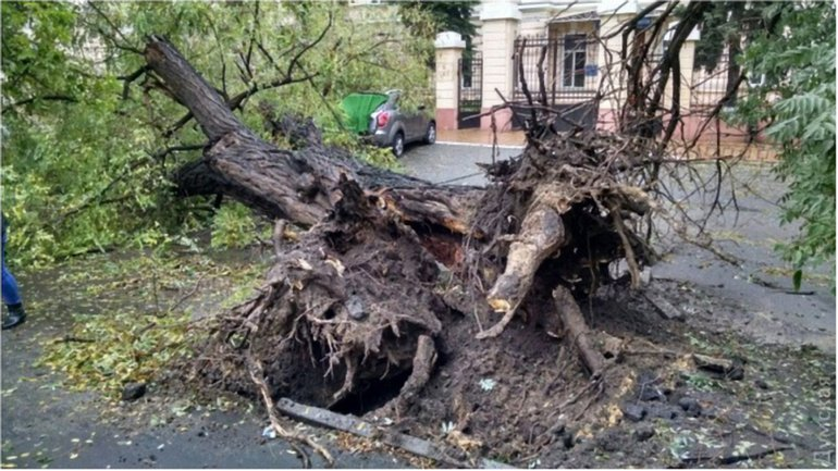 Одесса в октябре - фото 1