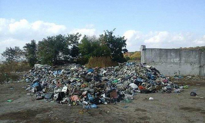 Местные жители не выпускают фуры, пока те не увезут мусор обратно во Львов - фото 1