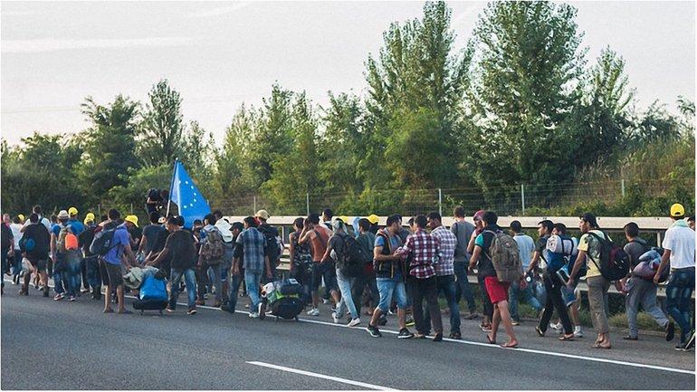 Мигранты в Европе - фото 1