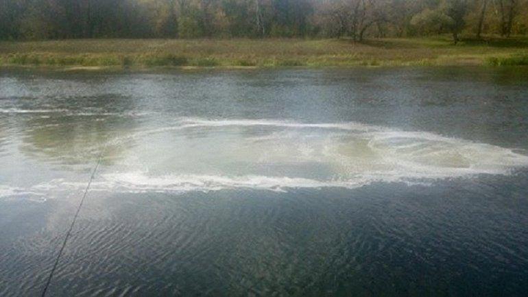 Вокруг загрязненной реки пропала вся фауна и портятся растения - фото 1