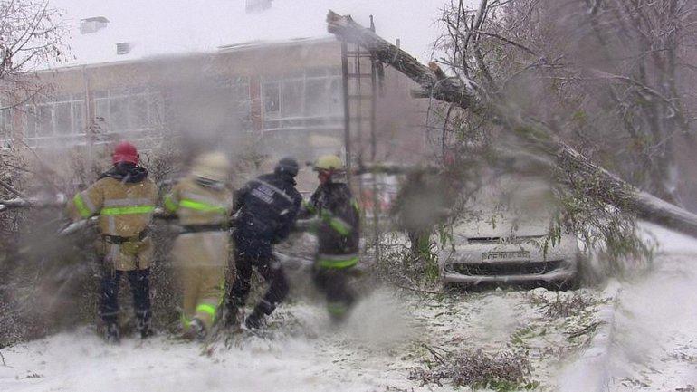 Из-за непогоды спасателям приходится расчищать дороги от поваленных деревьев и вызволять автомобили - фото 1