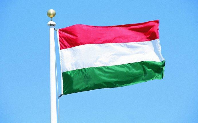 Власти Венгрии в курсе действий российских дипломатов по подготовке экстремистов - фото 1