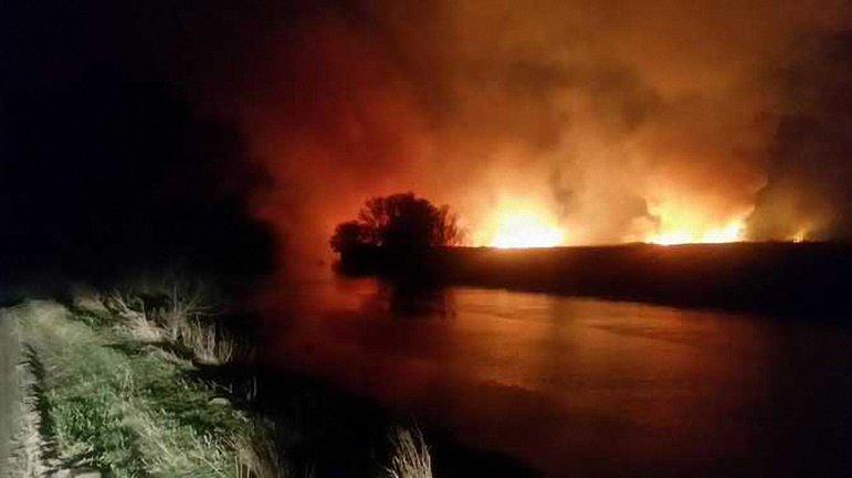 Спасатели приступили к локализации пожара под Киевом - фото 1