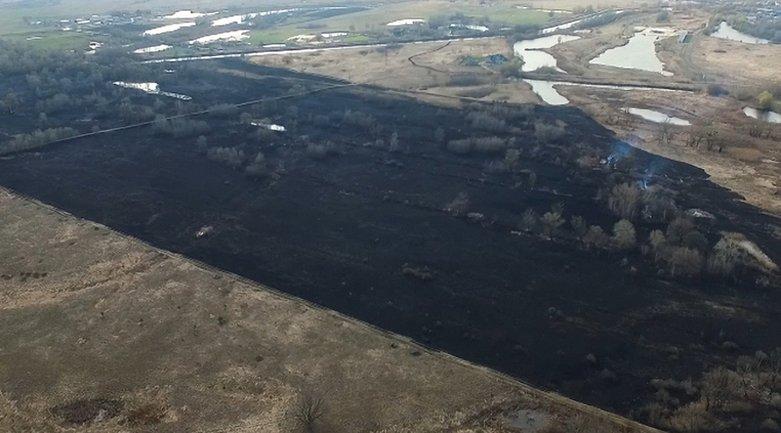 Огонь уничтожил 4 тысячи квадратных метров поля - фото 1