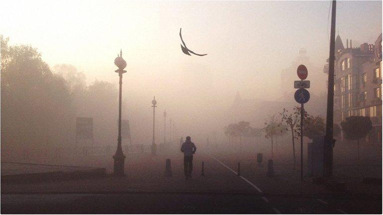 Туман в Киеве оказался грязным  - фото 1