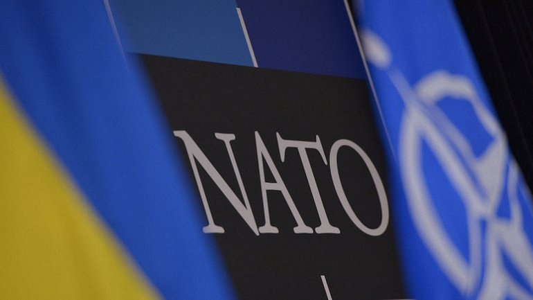 Многонациональные военные учения НАТО пройдут в июле 2017 года - фото 1