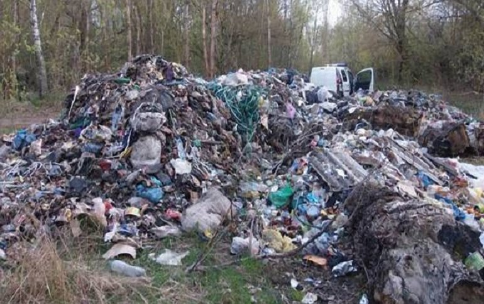 Полиция обнаружила 9 куч с мусором - фото 1