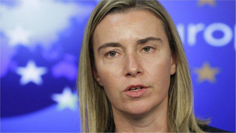 ЕС готов оказать помощь Египту в борьбе с терроризмом - фото 1