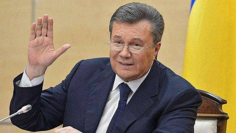 Янукович планирует защитить честь и достоинство  - фото 1