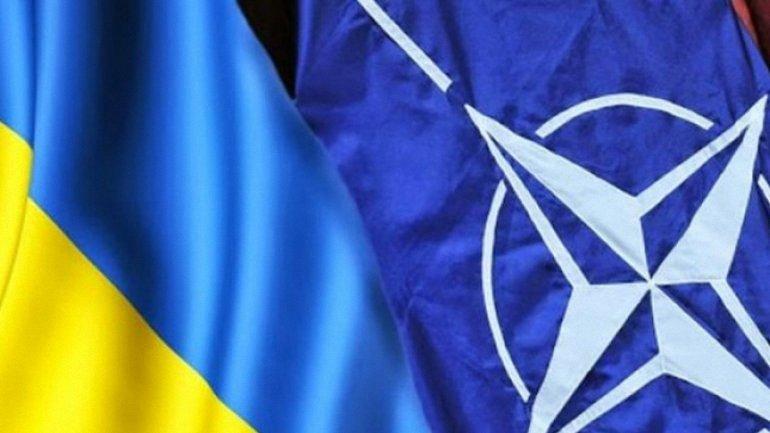 В НАТО заверили в поддержке Украины в блокировке российских сайтов - фото 1