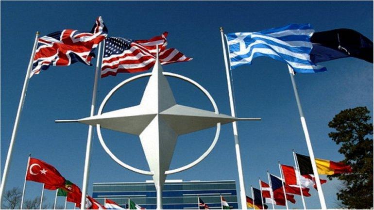 Ранее данный вопрос не рассматривался в НАТО - фото 1