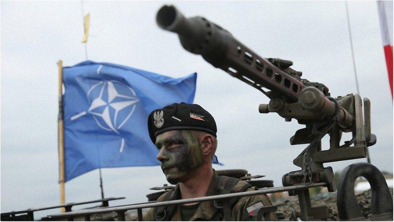 НАТО - надо - фото 1