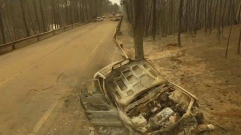 Последствия трагедии в Португалии - фото 1