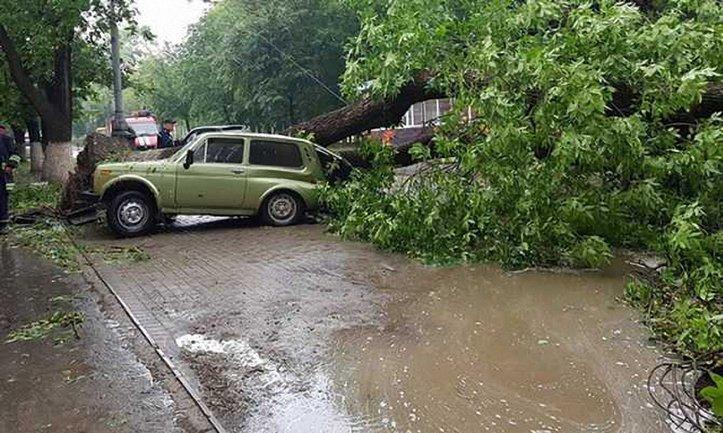 Спасатели приступили к ликвидации масштабных последствий урагана - фото 1