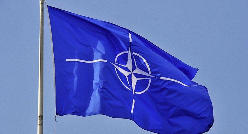 НАТО растет - фото 1
