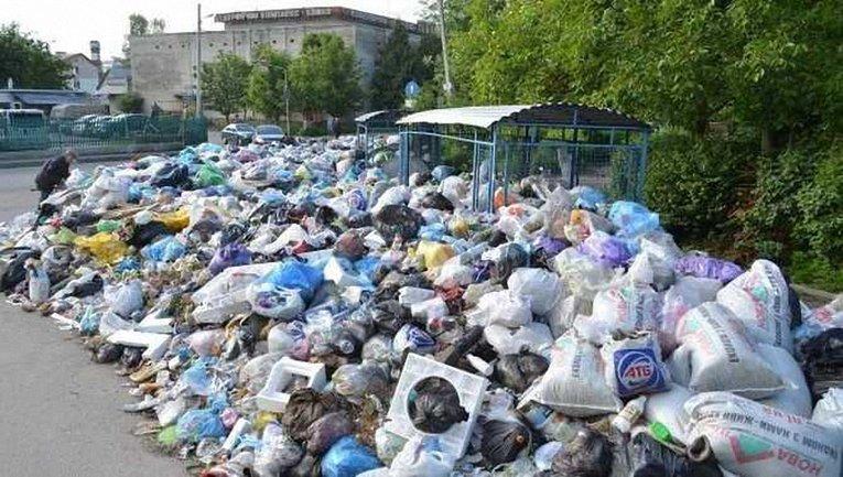 12 тысяч тонн мусора планируют вывезти за 2 недели - фото 1
