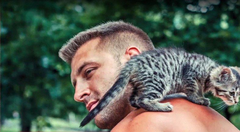 Котята и щенята ищут дом - фото 1