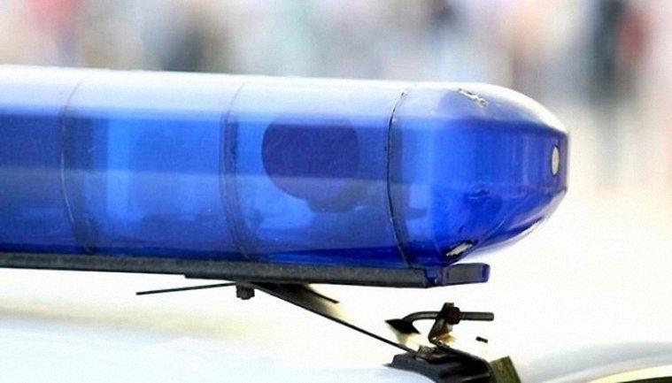 Пьяный полицейский сбил двоих пешеходов и врезался в дерево - фото 1