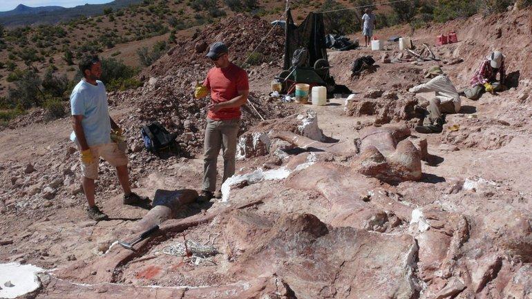 Дитеныш гигантского титанозавра был длиной 35 метров и весил более Boeing 737 - фото 1